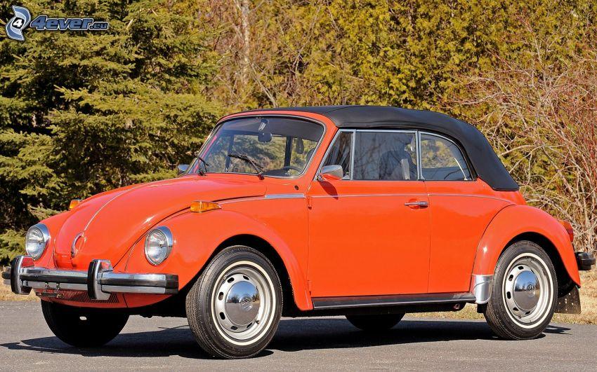 Volkswagen Beetle, veicolo d'epoca