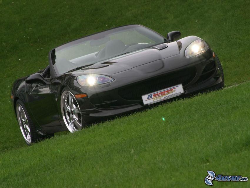 Chevrolet Corvette, auto sportive, cabriolet, l'erba