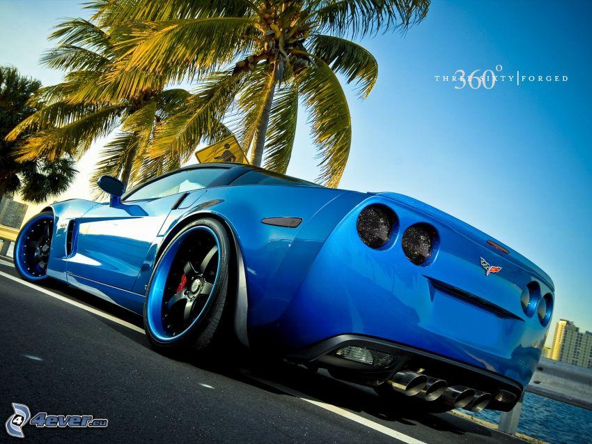 Chevrolet Corvette, palme