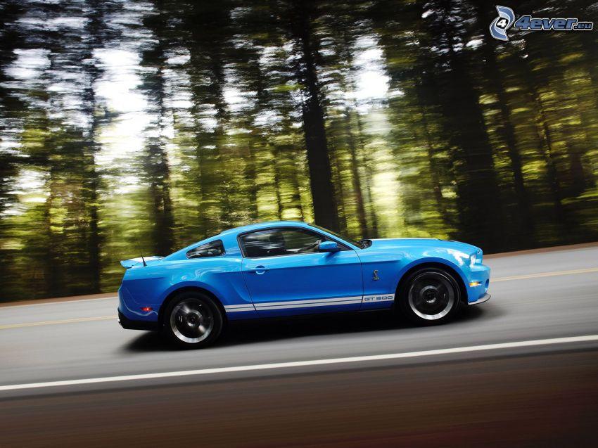 Ford Mustang Shelby, velocità, strada