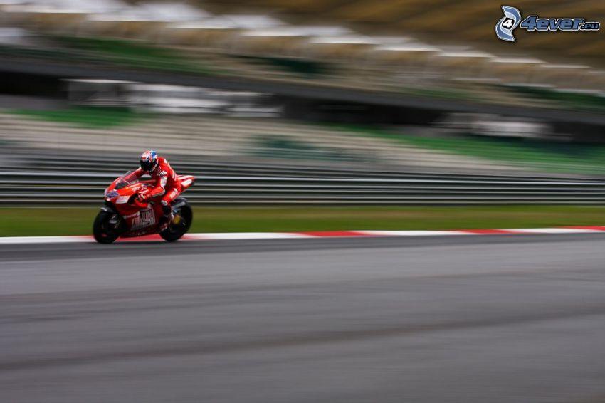 motociclista, motocicletta, velocità, circuito da corsa