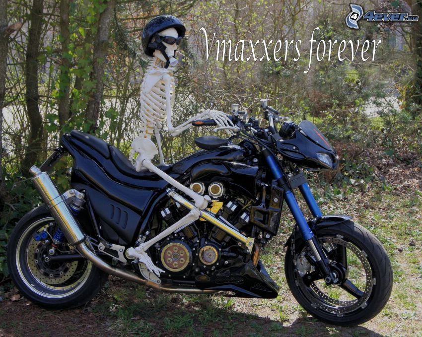scheletro, motocicletta