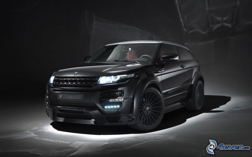 Range Rover Evoque, Hamann