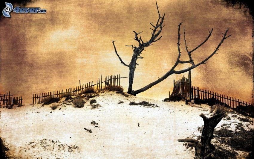 albero senza foglie, vecchio recinto di legno, neve