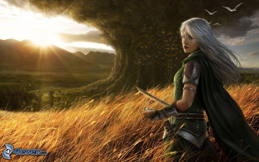 anime guerriera, campo, tramonto dietro le montagne