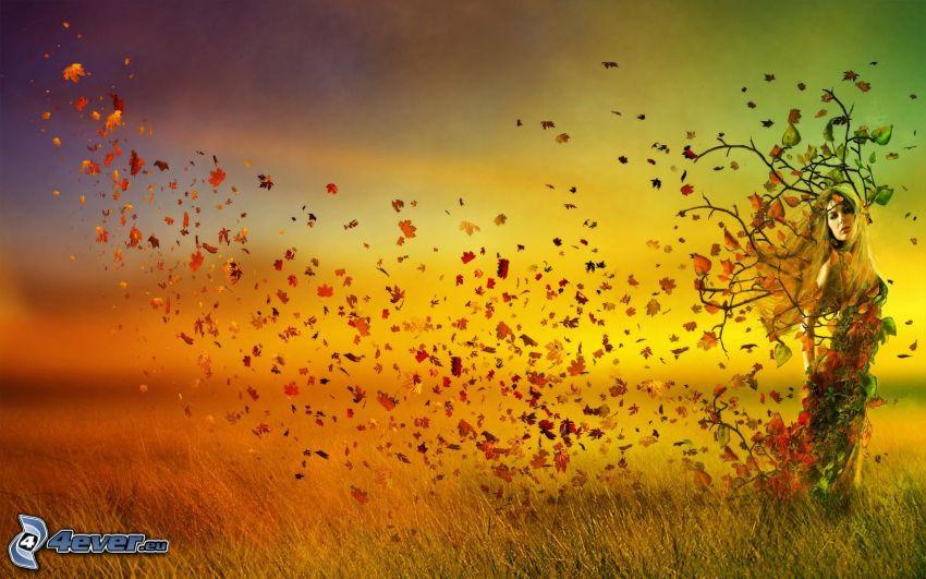 albero, donna, foglie di autunno, campo