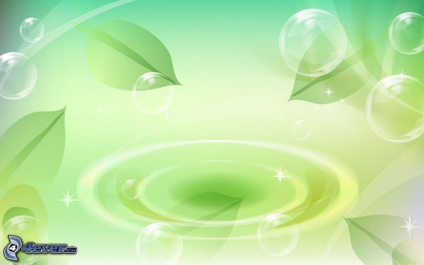 bolle, foglie, goccia