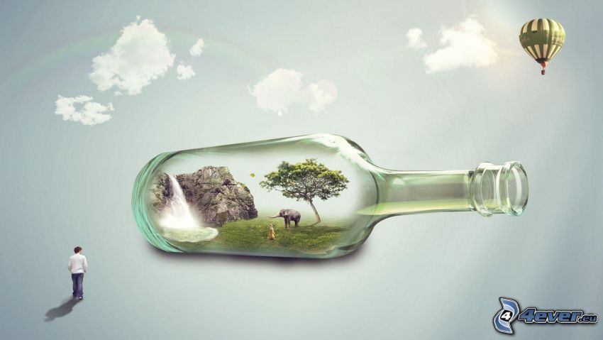 bottiglia, roccia, cascata, albero, elefante, suricata, palloncino, uomo, nuvole