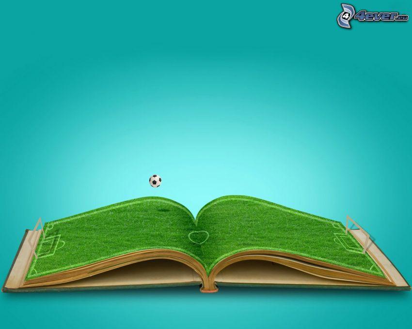 campo di calcio, libro, pallone da calcio