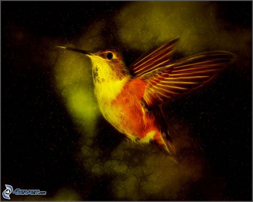 colibrì, uccello frattale