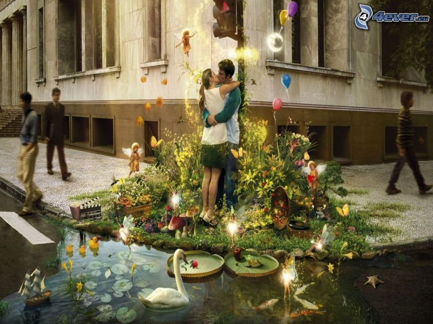 coppia, bacio, abbraccio, natura, cigno, laghetto, strada