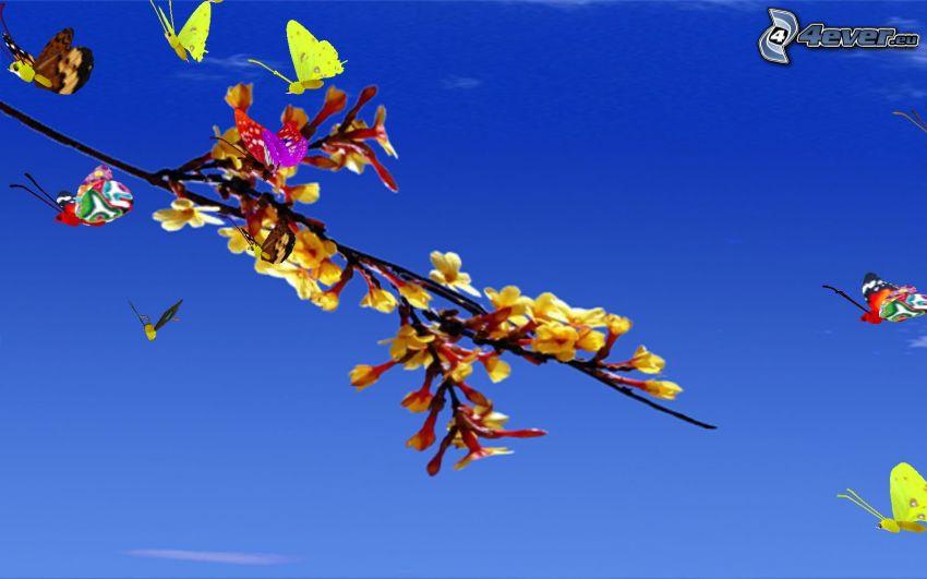 farfalle, ramoscello fiorito