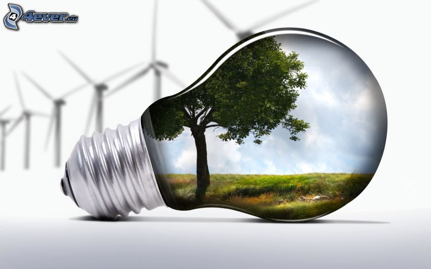 lampadina, albero frondoso, centrale eolica