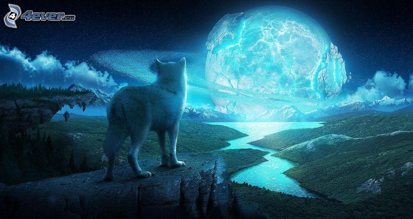 lupo, pianeta, notte