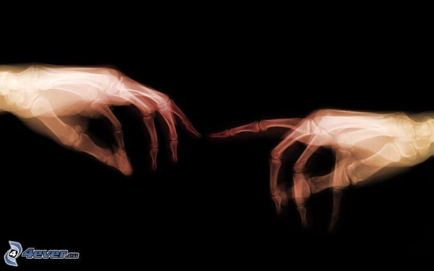 mani, scheletri, ossa, toccare
