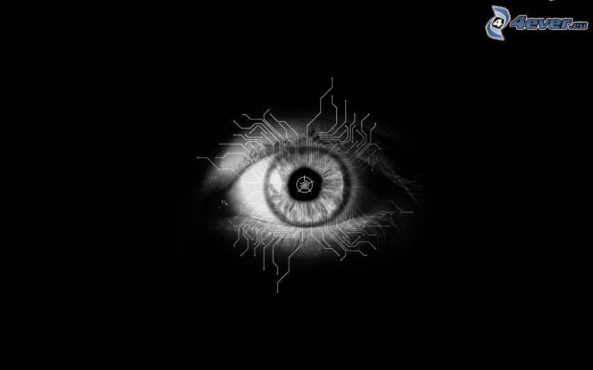 occhio, tecnica