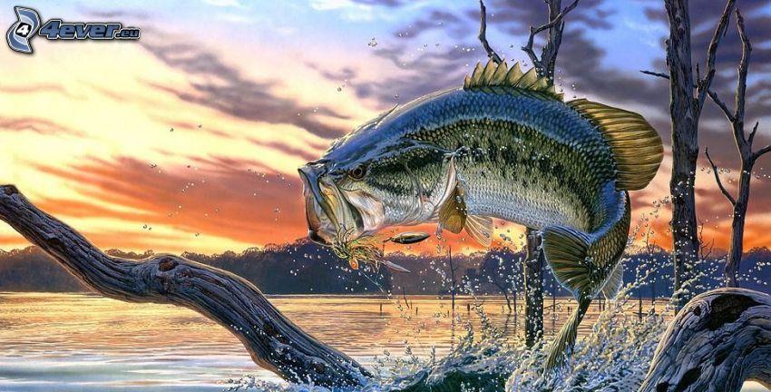 pesci predatore, lago