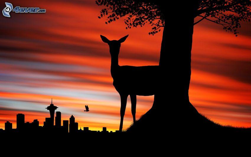 siluette, siluetta di cittá, daino, siluetta d'albero, serata all'alba