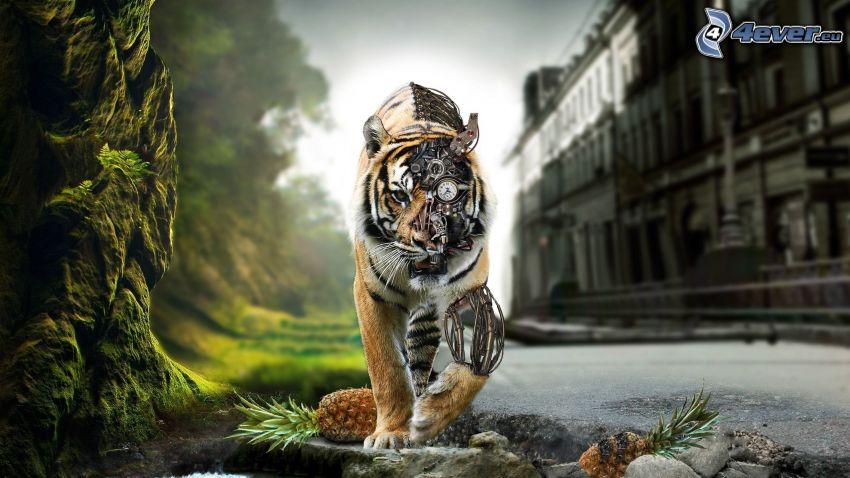 tigre, robot