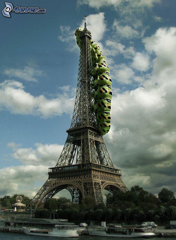Torre Eiffel, bruco verde, Parigi, Francia