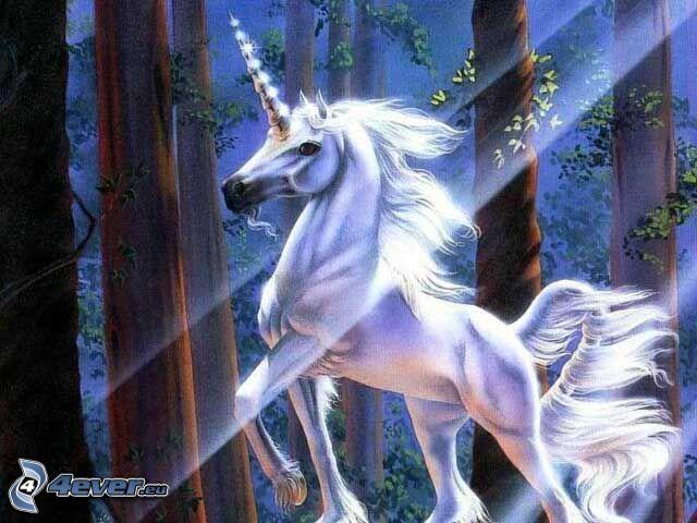 unicorno, foresta, raggi del sole