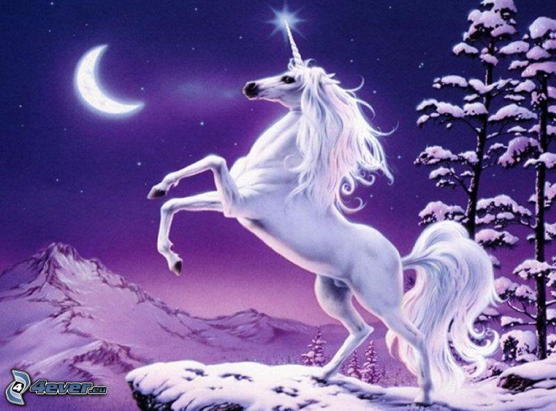 unicorno, luna, foresta, neve