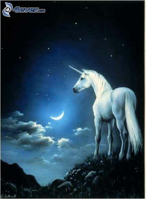 unicorno, luna