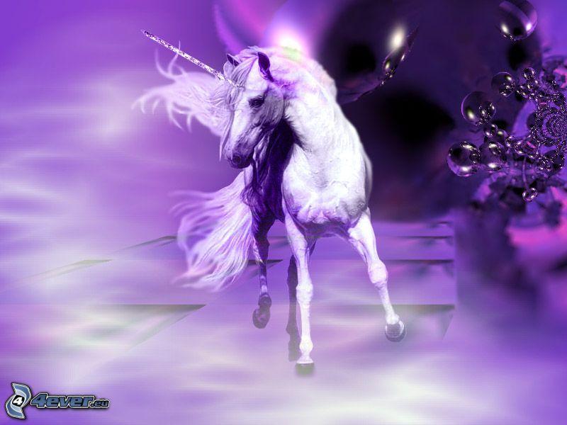 unicorno, viola, arte