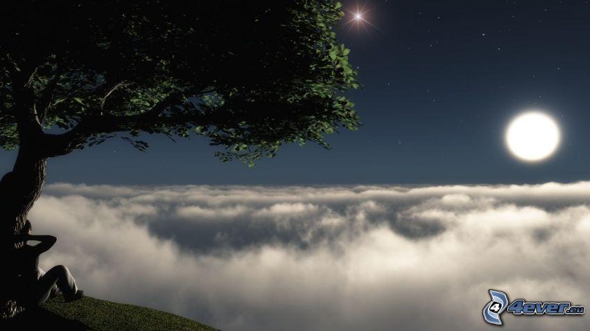 veduta, albero frondoso, luna, nuvole, umano, stelle