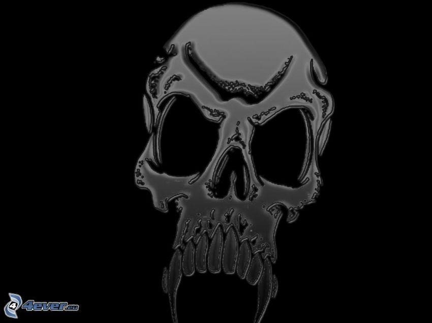 cranio, morte, oscurità, scuro