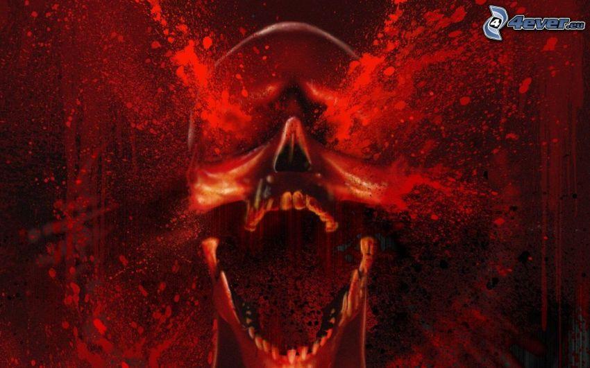 cranio, sangue