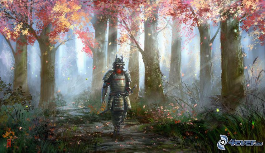 cavaliere, bosco autannale, raggi di sole nella foresta