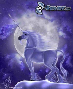 cavallo, unicorno