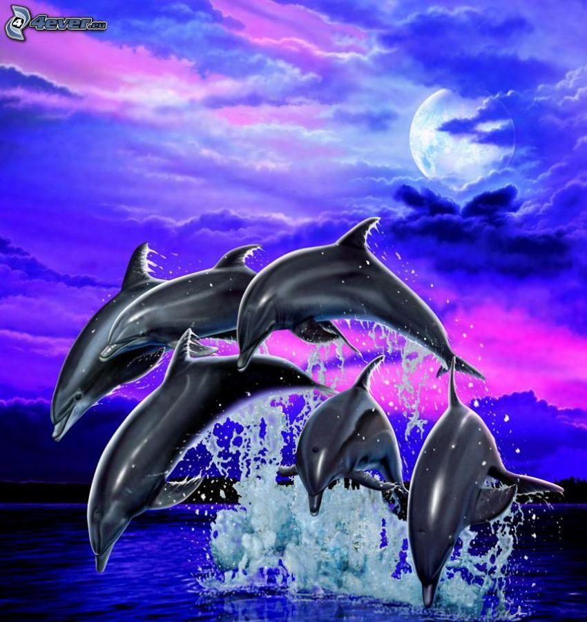 delfini disegnati, delfini che saltano, luna