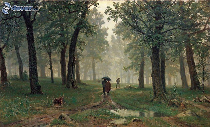 gente, ombrello, sentiero nel bosco