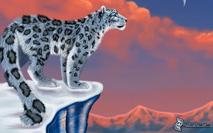 leopardo delle nevi, montagna
