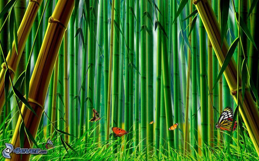 foresta di bambù, farfalle