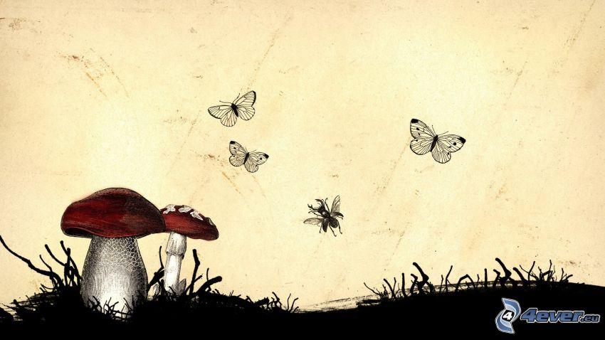 funghi, farfalle