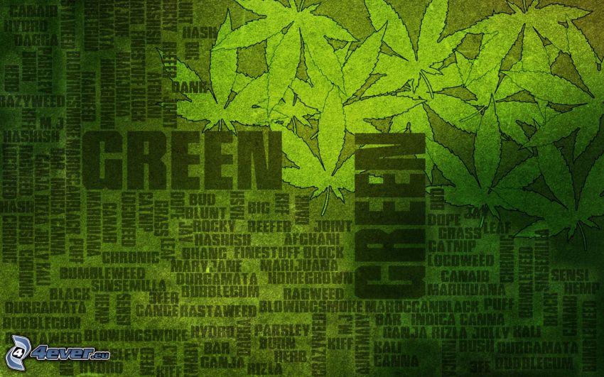 marijuana, verde, sfondo verde