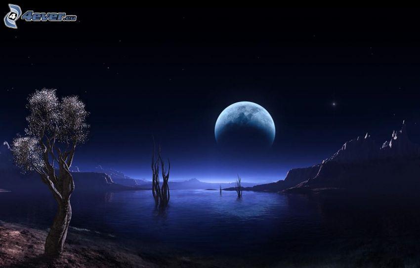 notte, luna, il fiume, albero