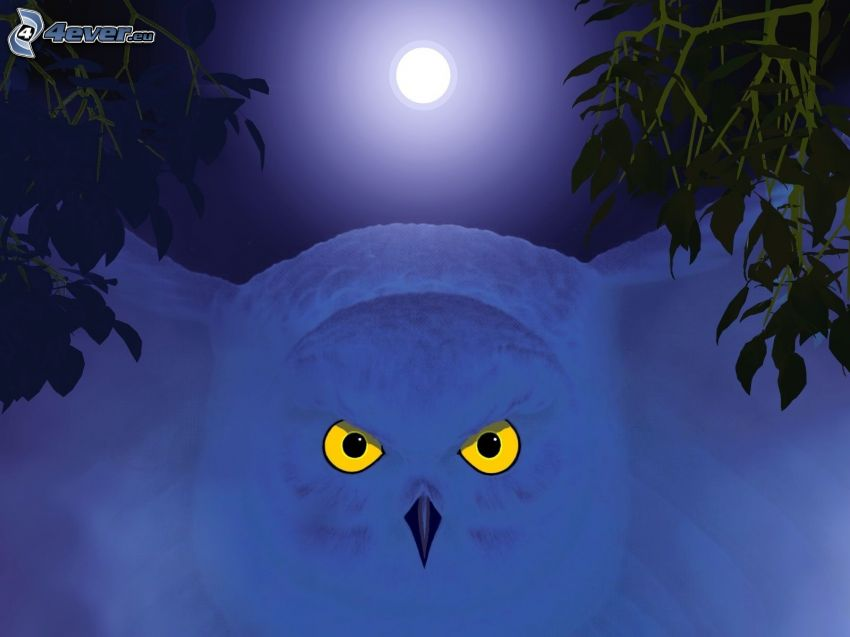nottola bianca, luna