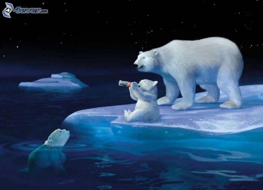 orsi polari, cuccioli, lastra di ghiaccio, Coca Cola, notte, cielo stellato, divertente