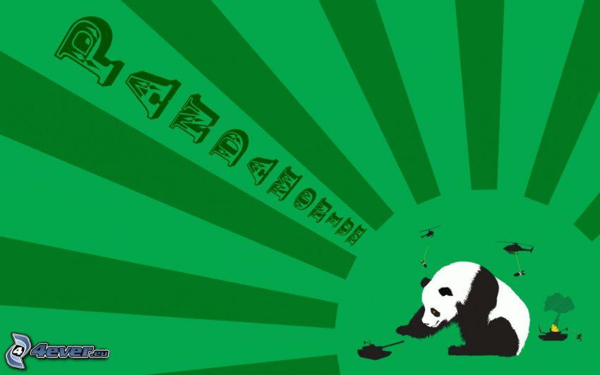 panda, righe