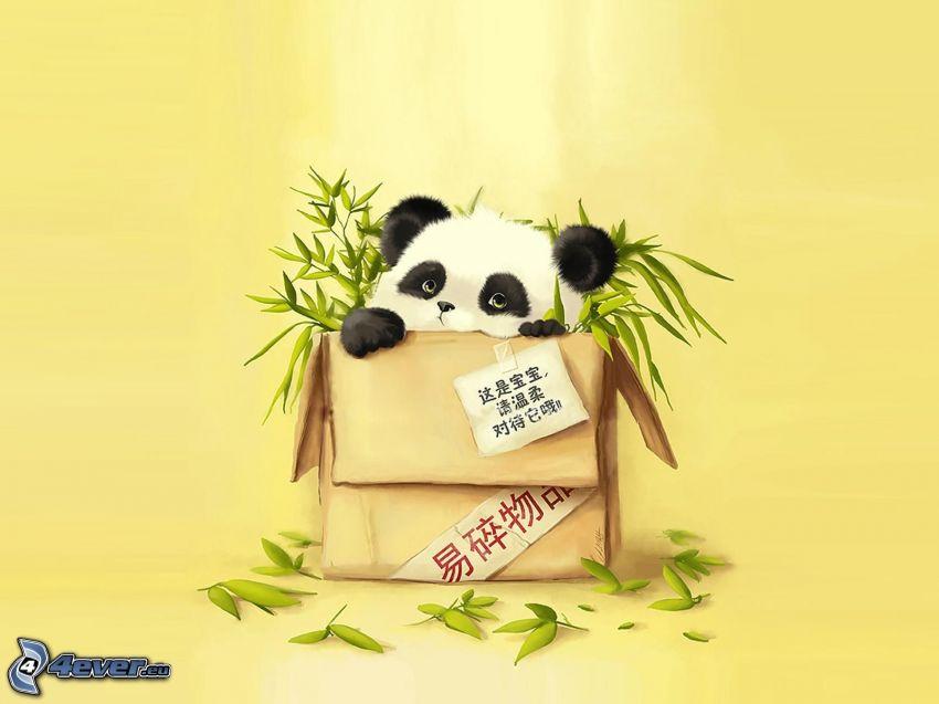 panda, scatola