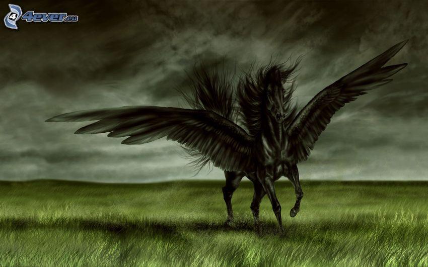 Pegaso, cavallo nero, ali, prato, nuvole