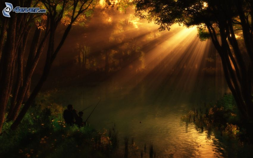 Pesca, raggi di sole nella foresta, laghetto nella foresta