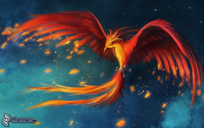 Phoenix, uccello di fuoco