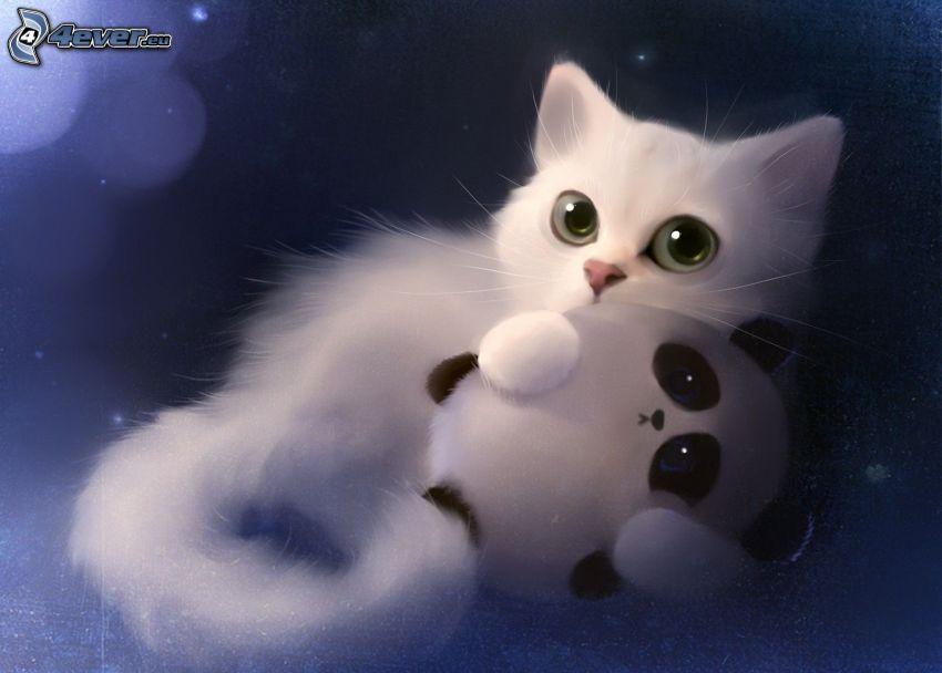 piccolo gattino bianco, panda