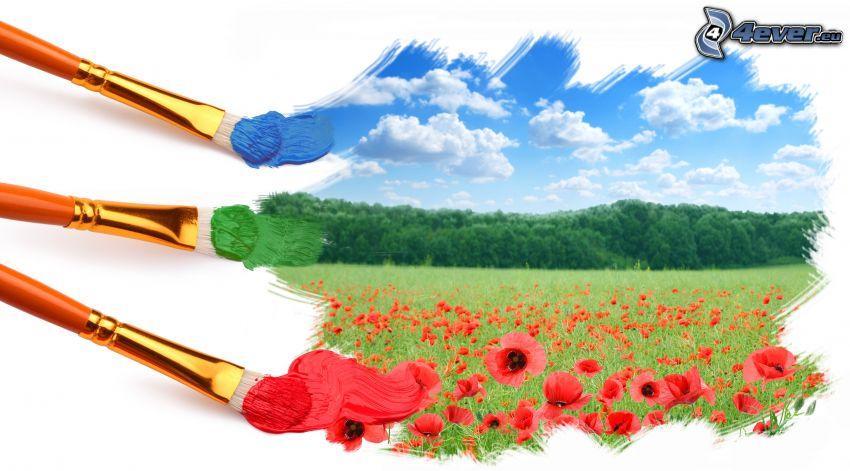 pittura, rosolaccio, foresta, nuvole, disegno, pennelli
