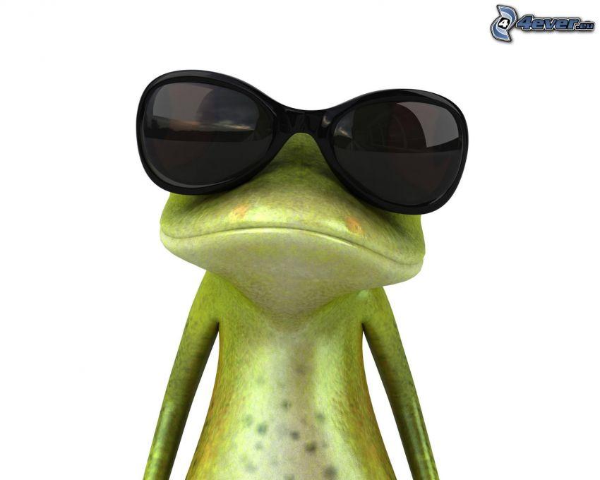 rana, occhiali da sole